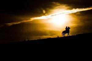 Conocé todo Consejos para montar a caballo por la noche