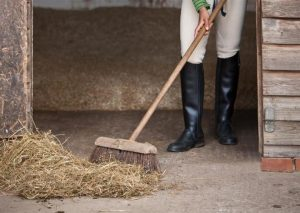 Conocé todo Cómo limpiar un puesto de caballos