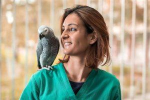 Conocé todo ¿Las aves necesitan visitas anuales al veterinario ?