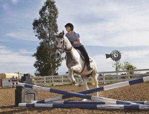 Conocé todo 7 Saltos de caballos comunes – Espectáculo o estadio de salto