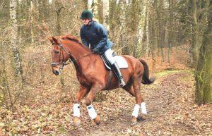 Conocé todo Equitación: ¿Es un deporte ?