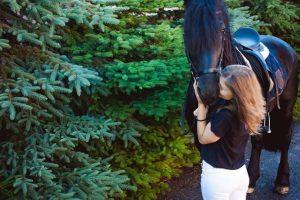 Conocé todo Enseña a tu caballo a dar un beso