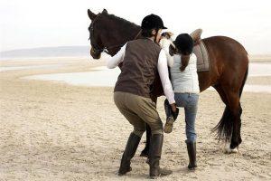 Conocé todo Qué hacer cuando su caballo no se queda inmóvil para el montaje
