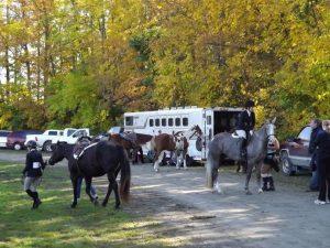 Conocé todo Lo que necesitas llevar a un espectáculo de caballos para el caballo